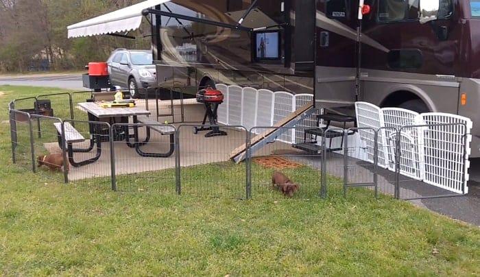 camping-dog-fence